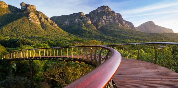 The Magnificent Kirstenbosch National Botanical Gardens Love My Cape Town