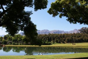 webersburg wine estate picnic