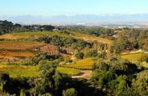 Constantia Valley