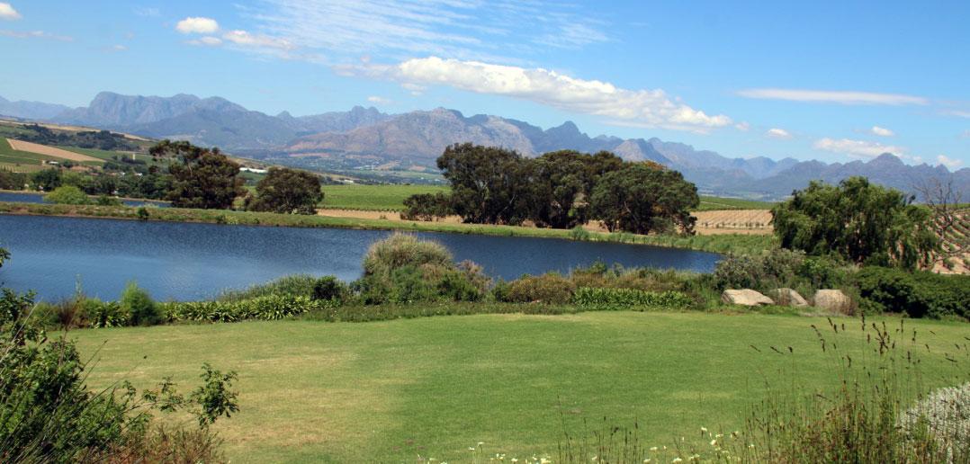 Website Design Stellenbosch