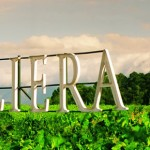 Villiera Wine Estate